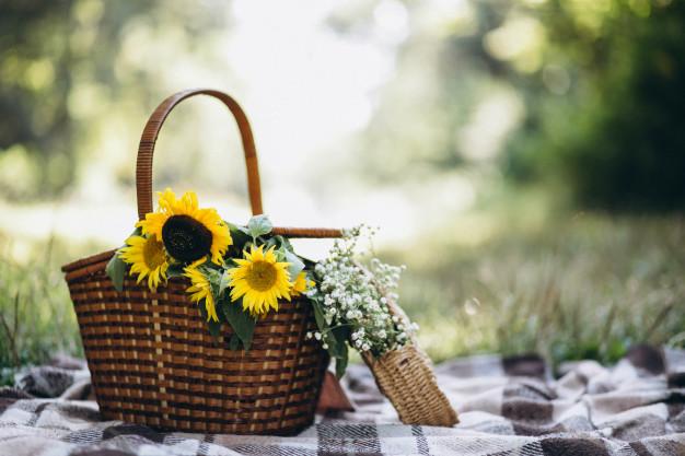 picnic-basket-with-fruit-flowers-blanket_1303-10665